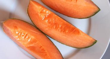 Jak poznat zralý cukrový meloun?